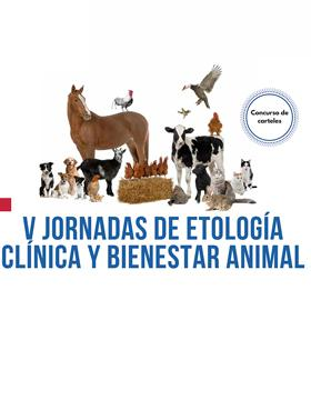 Identidad gráfica para anunciar las Jornadas de Etología Clínica y Bienestar Animal